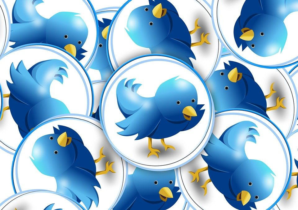 Many tweets tweeting on Twitter